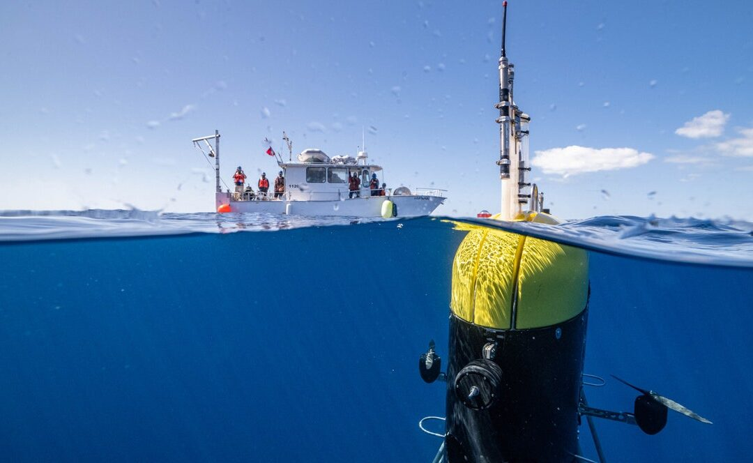 This Robot Spies on Creatures in the Ocean's 'Twilight Zone'